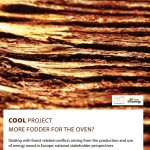 Dealing with forest related conflicts arising from the production and use of energy wood in Europe: national stakeholder perspectives